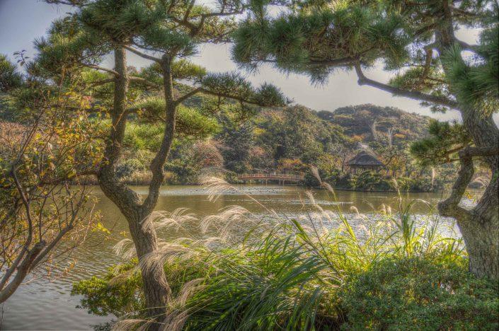 Atmosphere Landscape